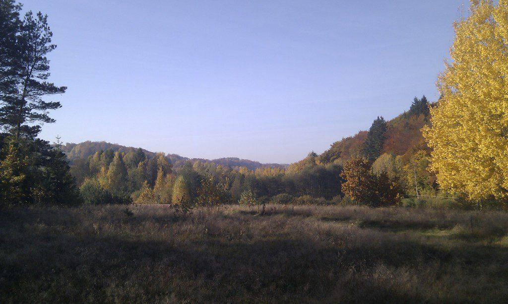 jesienny-widok-na-dzialke-domu-pasywnego-wiezyca