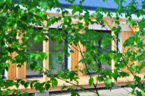 Zacienienie działki a dom pasywny