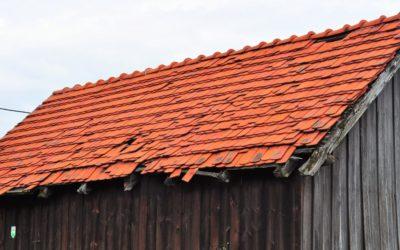 Czarna stodoła – przestrzeń, natura, światło